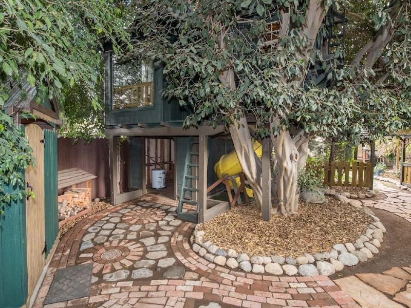 Treehouse Adventure