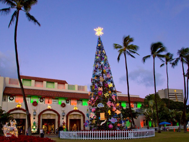 "Honolulu Hale (City Hall), ""Honolulu City Lights"" features a 50-foot Norfolk pine Christmas tree, giant Yuletide displays and live entertainment."