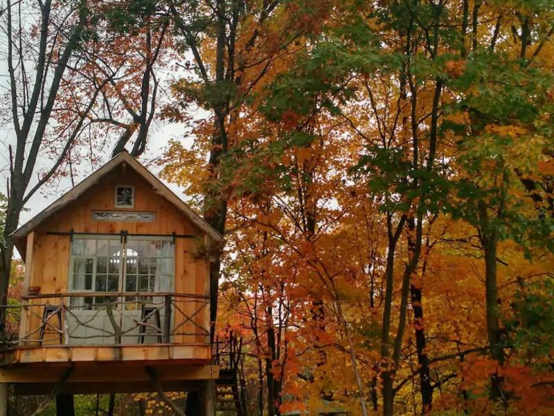 Whispering Winds Treehouse, Argyle, New York