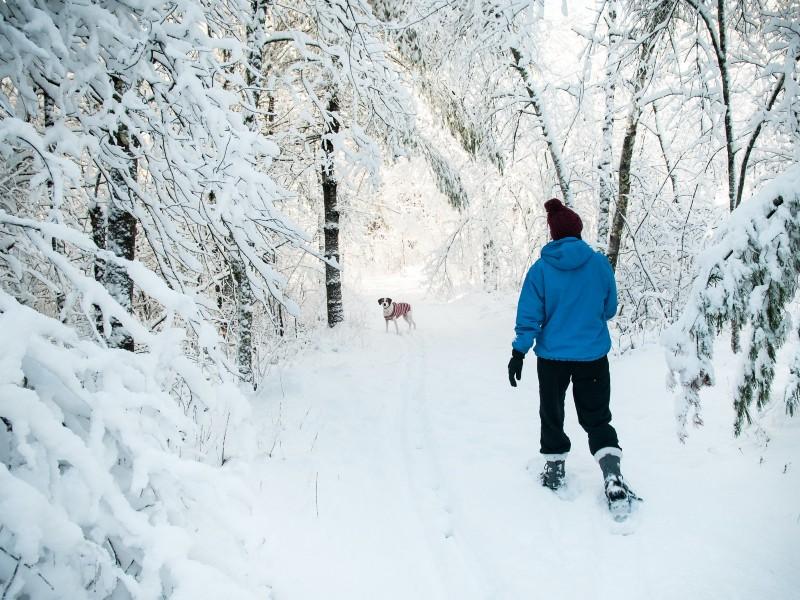 NH Snowshoeing