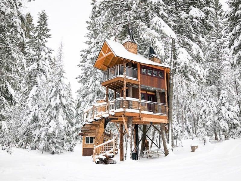 Snowy Meadowlark Treehouse