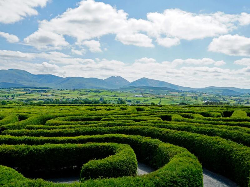 Castlewellan Peace Maze