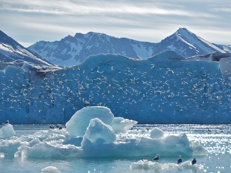 Monaco Glacier in Svalbard, Norway
