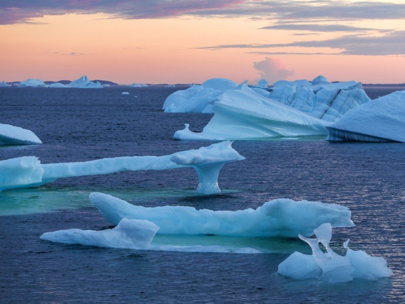 Icebergs floating off Fogo Island in the evening light