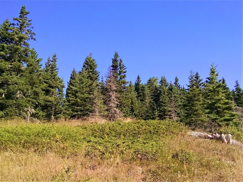 Man reclines in sun on Isle Royale National Park