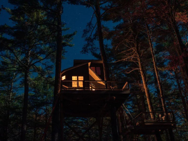 Nighttime at BREEZE, in a tree - The Appleton Retreat