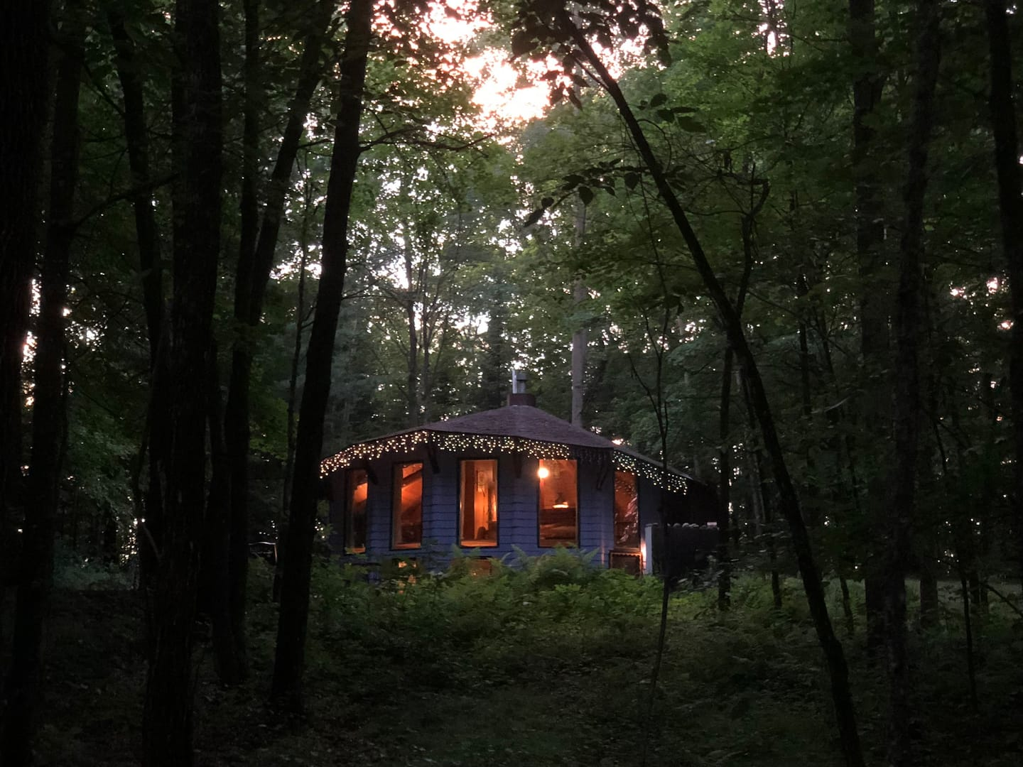 Birchwood Blue Cabin- Come to the Wild Blue
