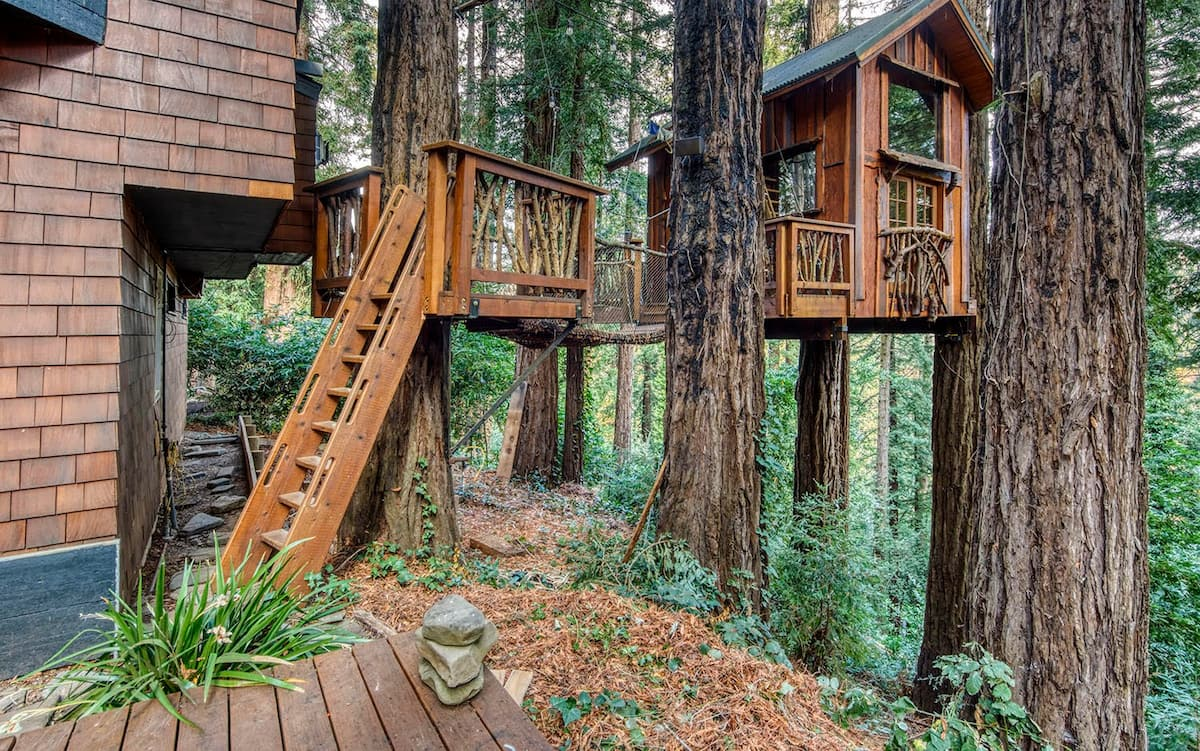 Outside A Treehouse in the Sky