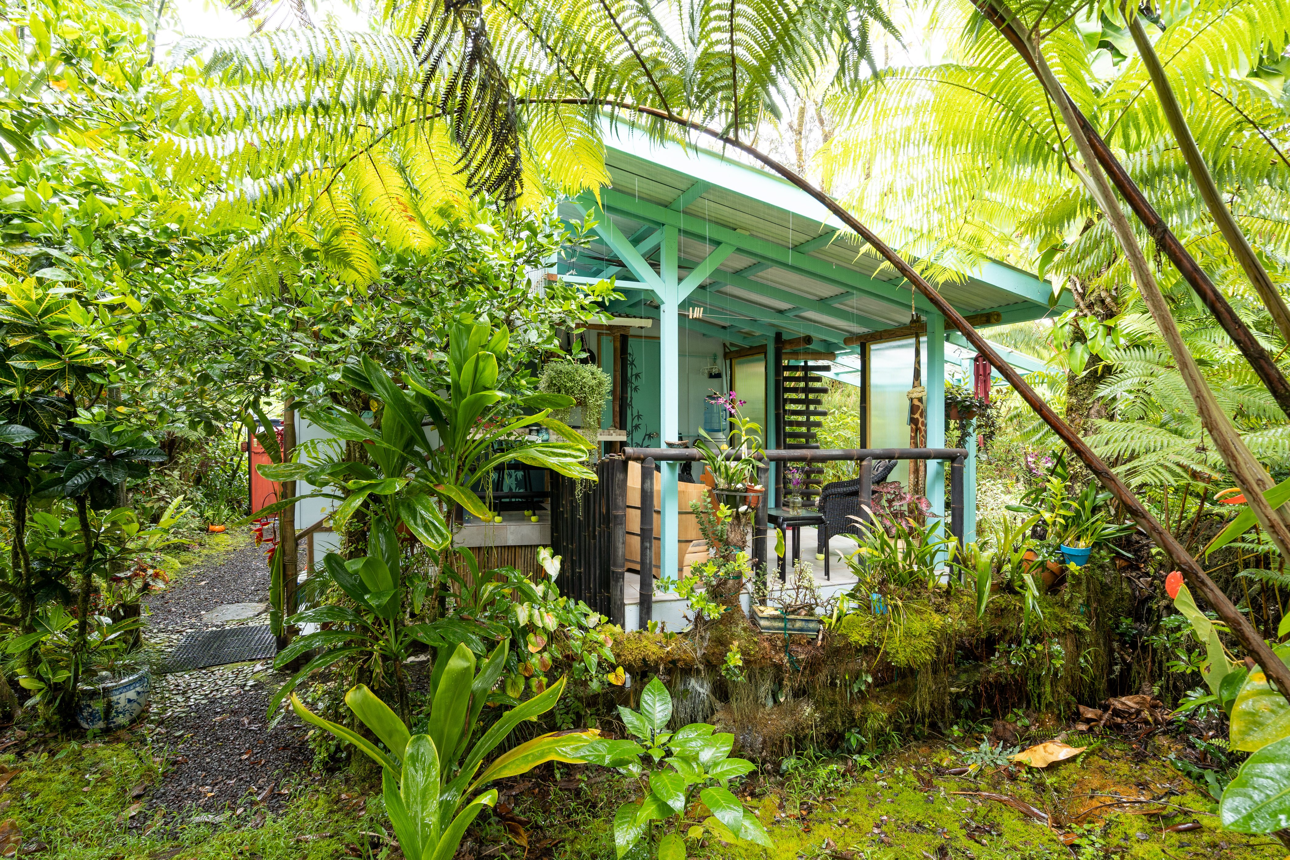 Eco Hale Hawaii in the Rainforest