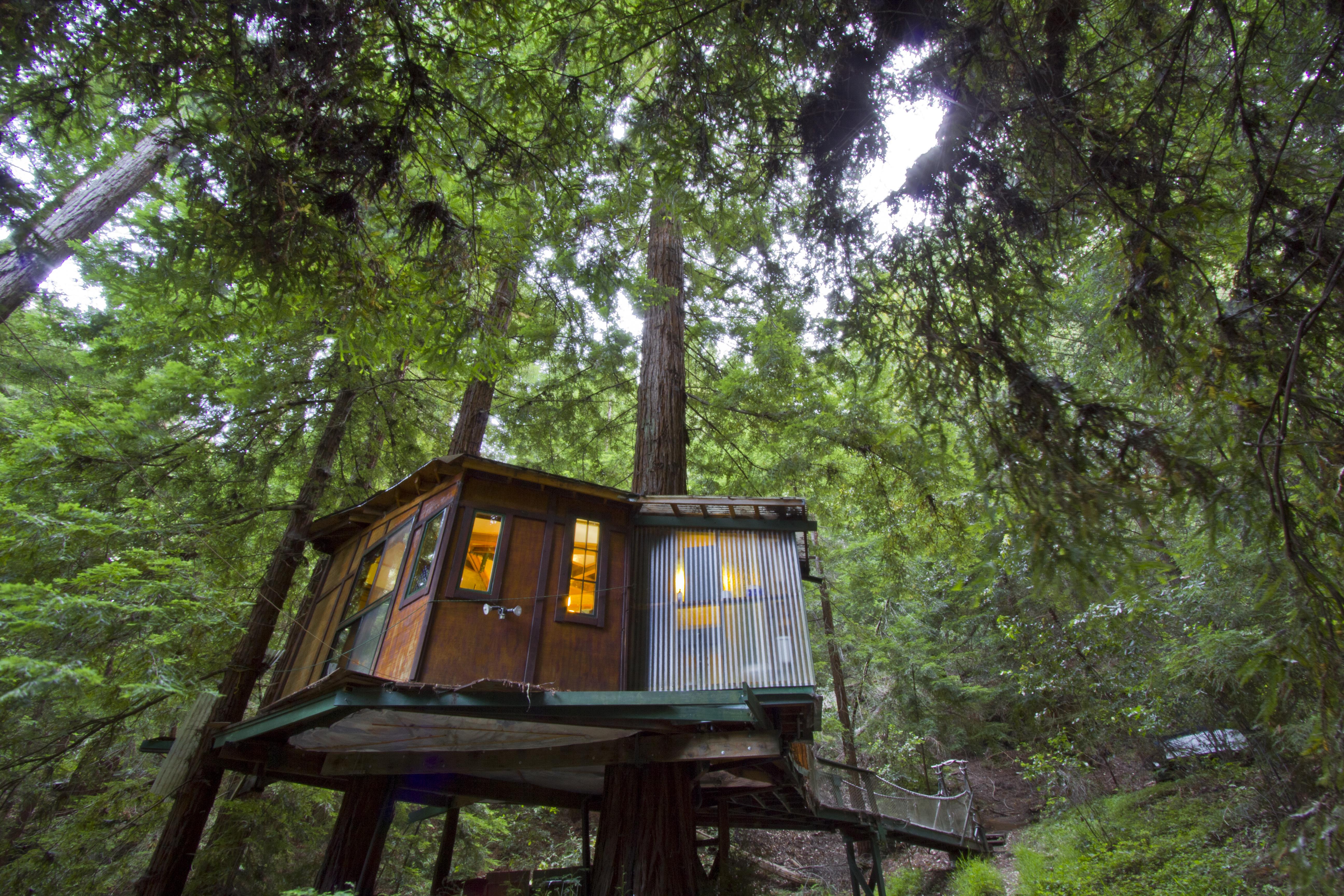 Redwood Treehouse Santa Cruz Mountains