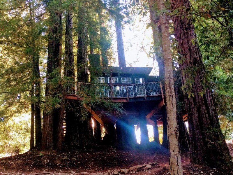 Romantic Treehouse in the Redwoods